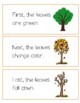 Fall Sequencing Cards with Transition Words