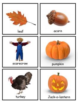 Fall Vocabulary and Silhouette Match--Montessori Matching