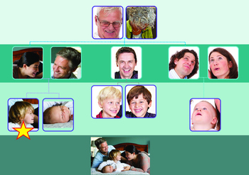 Family Vocabulary Flashcards, Family Tree Mats for Speech