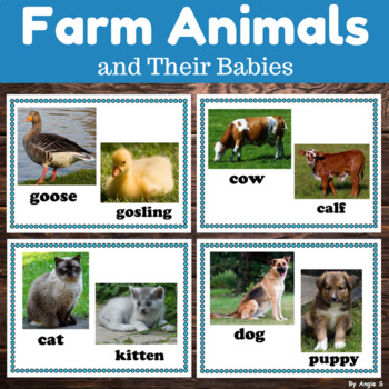 Farm Animals & Their Babies Posters