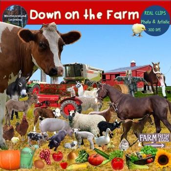 Farm Clip Art  Set Farm Animals & Plants Real Clips Photo