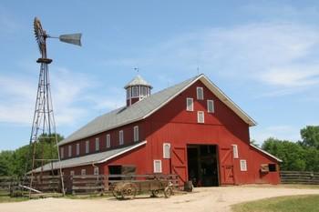 Farm Vocabulary (Realia Pictures)