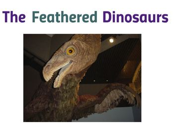 Feathered Dinosaurs (Prezi)