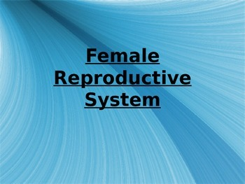 Female Reproductive System Powerpoint