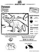 Fennec Fox -- 10 Resources -- Coloring Pages, Reading & Ac