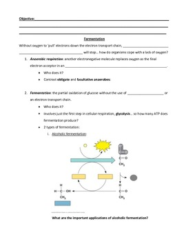 Fermentation guided notes, analysis, and inquiry