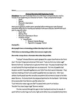 Fictional Narrative Beginning Paragraph Analysis