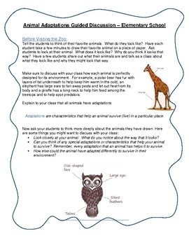 Field Trip Activities for the Classroom: Animal Adaptations