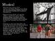 Film Studies - 17 Film Genres