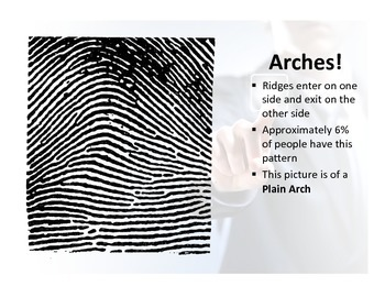 Fingerprints for Middle School