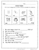 First Grade Phonics Skills Sampler Freebie