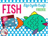 Fish Life Cyle Craft