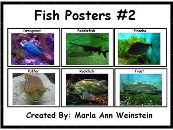 Fish Posters #2