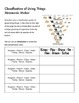 Classification of Living Things Lab Activity