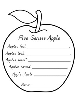 Five Senses Apple