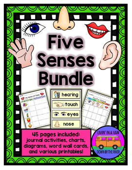 Five Senses BUNDLE