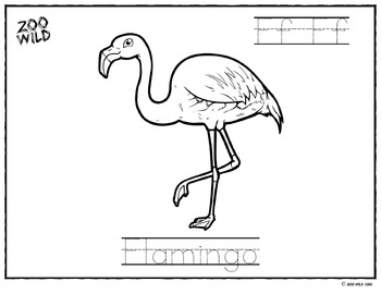 Flamingo Coloring Page -- Letter Practice -- Homeschool or