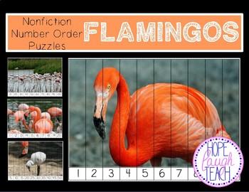 Flamingo Number Puzzles