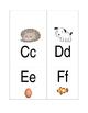 Flash Cards- Alphabet