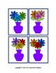 Floral Color Matching Task