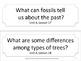 Florida 3rd Third Grade ELA ESSENTIAL QUESTIONS No Border