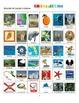 Florida:  State Symbols and Popular Sites