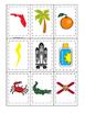 Florida themed Memory Matching and Word Matching preschool