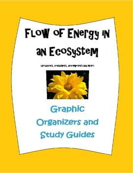 Flow of Energy in an Ecosystem Unit graphic organizers and
