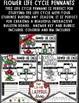 Flower Life Cycle Activity • Teach-Go Pennants