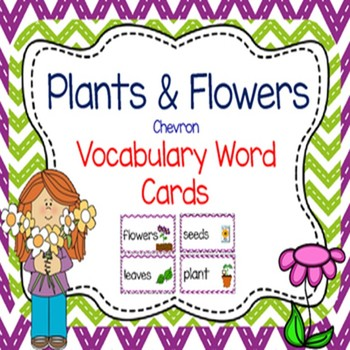 Flowers and Plants CHEVRON Vocabulary Cards