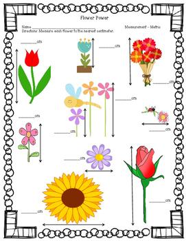 Flower Power - Measurement Practice
