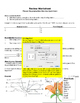 Flower Reproduction Student Choice Game Sheet (Easy Teache