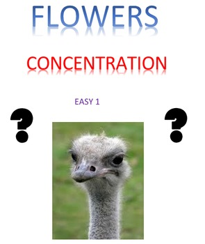 Flowers Concentration Easy 1