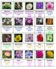 Flowers Crossword Puzzles   Vol. 3