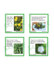 Flowers and Plants Unit Activity - Fun Fact Cards for Game