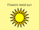 Flowers animated story for nonverbal level 1 learners