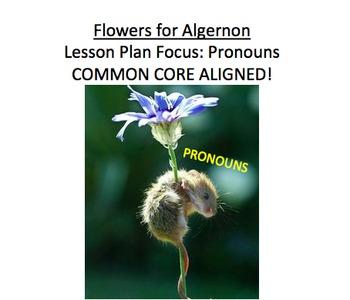 Flowers for Algernon Lesson Plan, Handouts, etc: Pronouns,