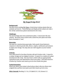 Fly Traps STEM Children's Engineering Design Brief