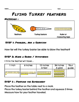 Flying Turkey Feathers (Thanksgiving turkey baster experim