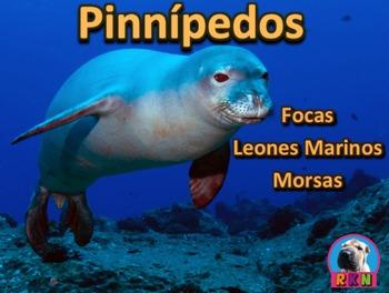La Foca, El Leon Marino, Y La Morsa: Los Pinnípedos: Powe