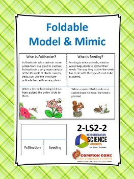 Animals Seeding/Pollination-Foldable/Mimic/Hands On: NGSS