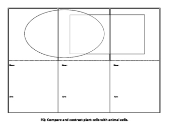 Folding Venn Diagram on Cells