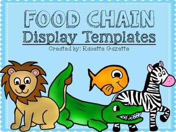 Food Chain Display Template