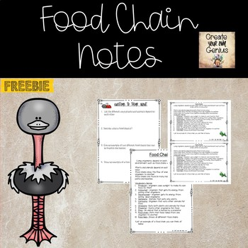 Food Chain Notes and Questions for Science Notebook