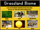 Food Chains and Biomes Smart Notebook Lesson