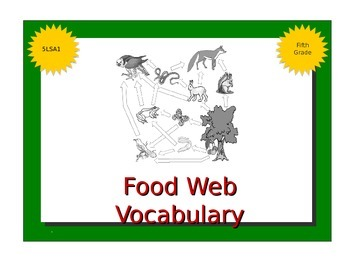 Food Chains/Webs Vocabulary