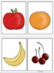 ESL Food Groups Direct Instruction Vocabulary Cards Early