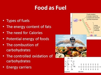 Food as fuel: how are bodies use it- Biology PowerPoint Le