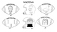 Football/Superbowl Articulation & Sight Word Coloring Page