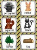 Forest Animals Read, Write, and Count the Room {Literacy a